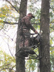 When setting up on a field edge tree near an active trail, place your stand in a spot that is generally downwind and right on the edge, so you don't spook deer from the area.