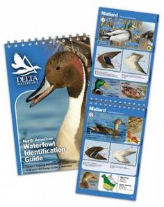The Delta Waterfowl North American Waterfowl Identification guide is intended to help you ID your targets.