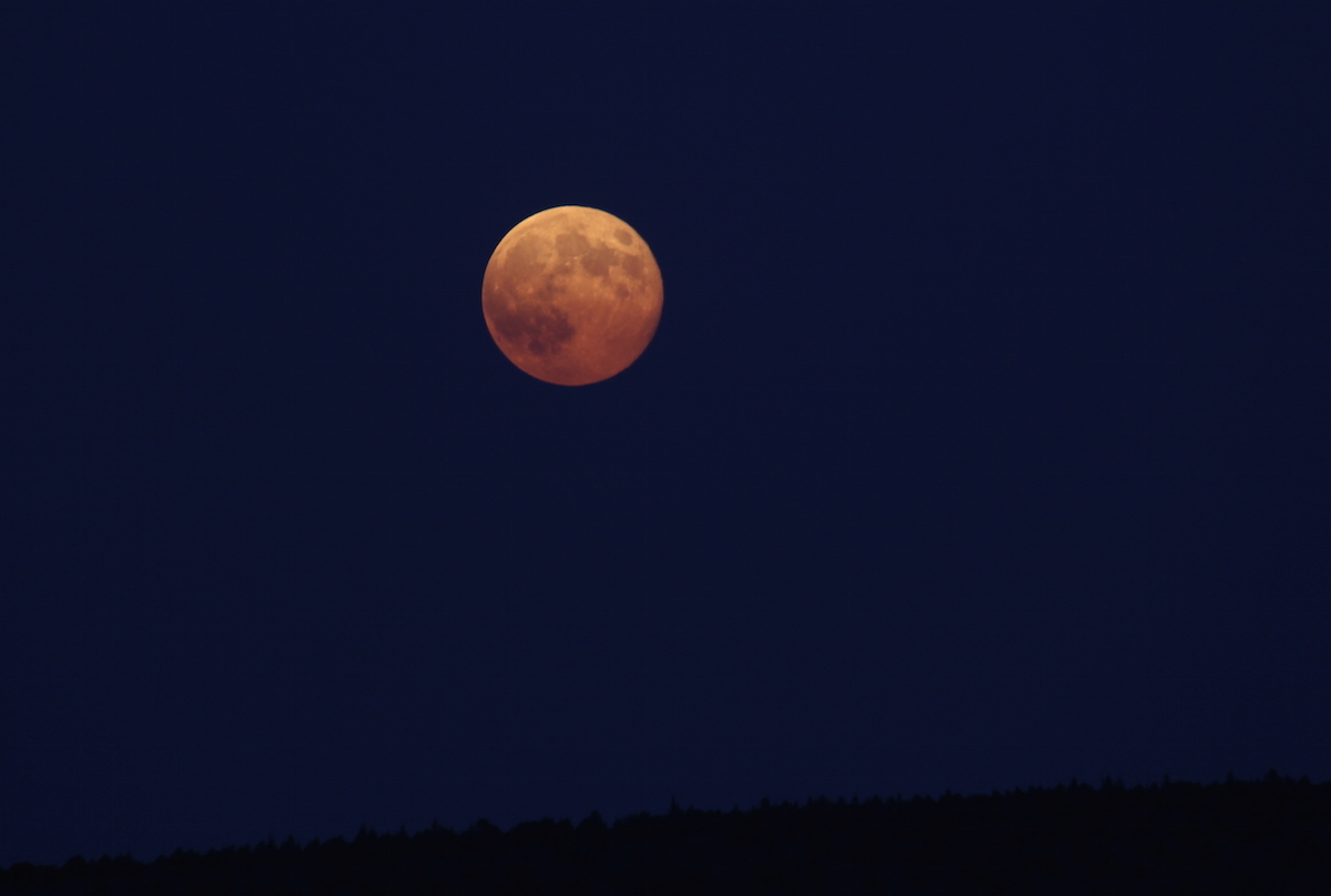 The moon has long been understood to influence the rise and fall of tides, but it may also influence the rise and fall of your success as a deer hunter. Image courtesy BLM.