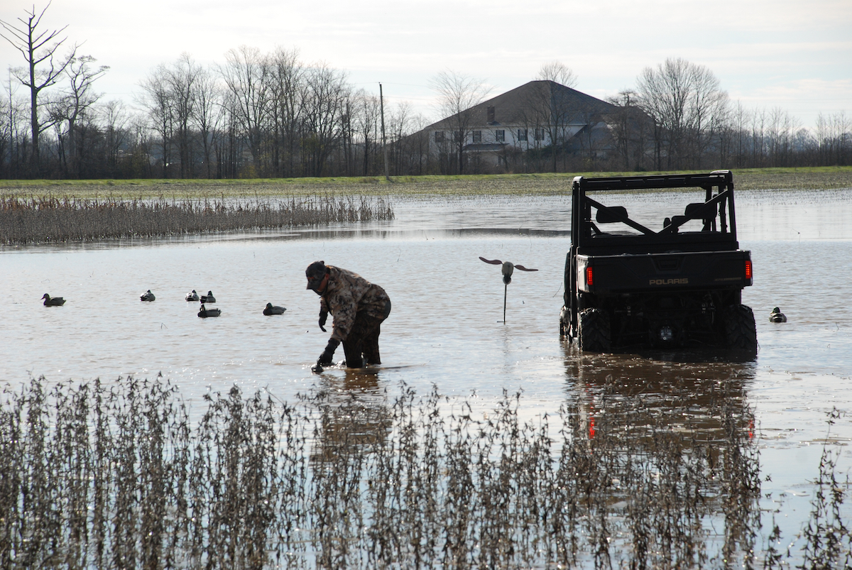 Setting out decoys is an important part of the waterfowling process.