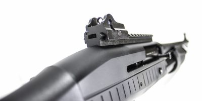 The rear sight is a heavy-duty ghost ring system situated behind a strip of Picatinny rail.