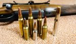 Brothers In Arms: Understanding Famous Ammo Family Trees