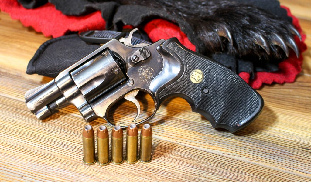 When Bears Attack — Top Sidearms to Carry in Bear Country