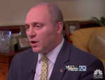 House Majority Whip Steve Scalise: 2A is 'Unlimited' Right