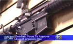 Illinois Town to Fine AR Owners $1,000 Per Day to Increase 'Public Sense of Safety'