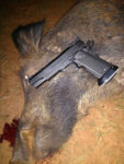 The Indomitable .40 S&W Goes Hog Hunting