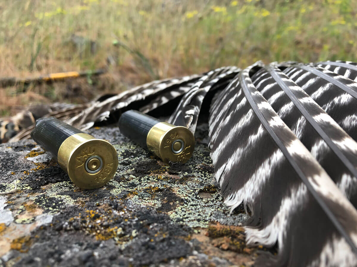 BROWNING AMMO TSS TUNGSTEN TURKEY AMMO REVIEW