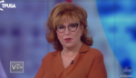 Joy Behar: Wait to get elected before you take guns away