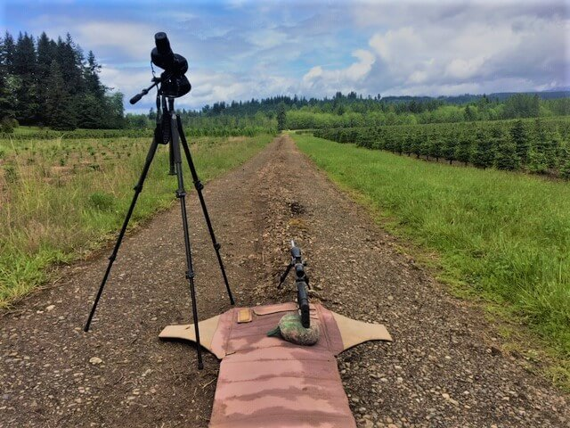 Shoot Like SOCOM: The 6.5 Creedmoor Cartridge & its Long Distance Relationship with CMMG's Endeavor Mk3