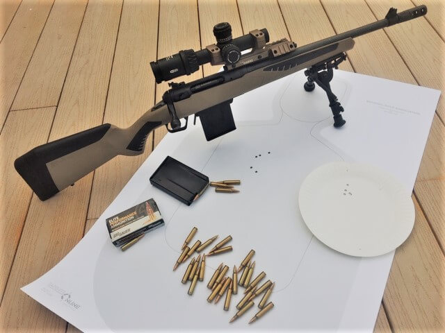 Affordable All Purpose Rifle for the 21st Century: Savage's 110 Scout