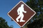 Oklahoma State Legislator Proposes Official Bigfoot Hunting Season