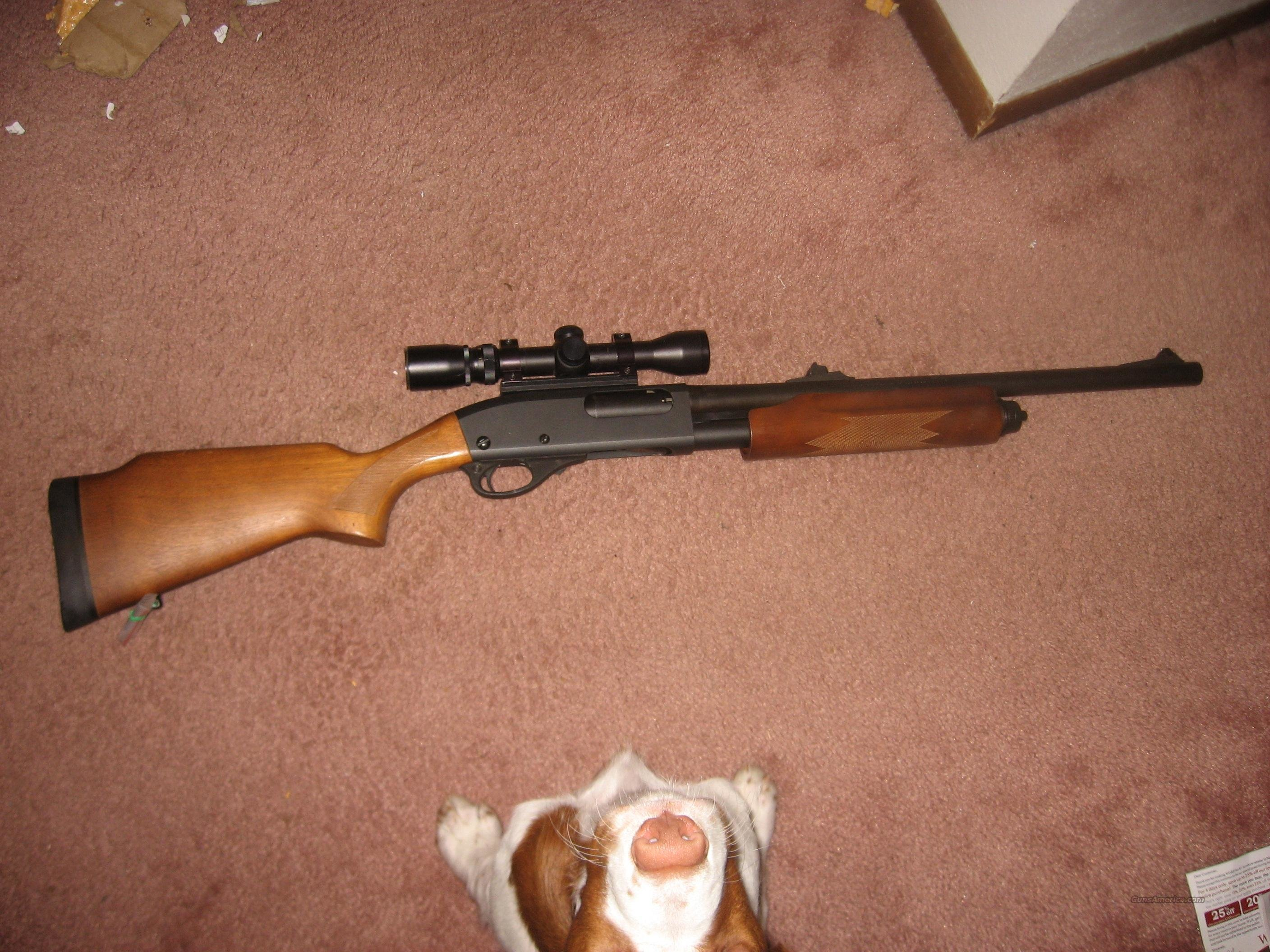 Remington 870 Express Slug gun  Guns > Shotguns > Remington Shotguns  > Pump > Hunting