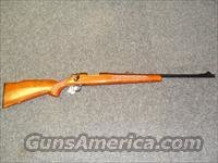 Remington 700 ADL  243  Guns > Rifles > Remington Rifles - Modern > Model 700 > Sporting