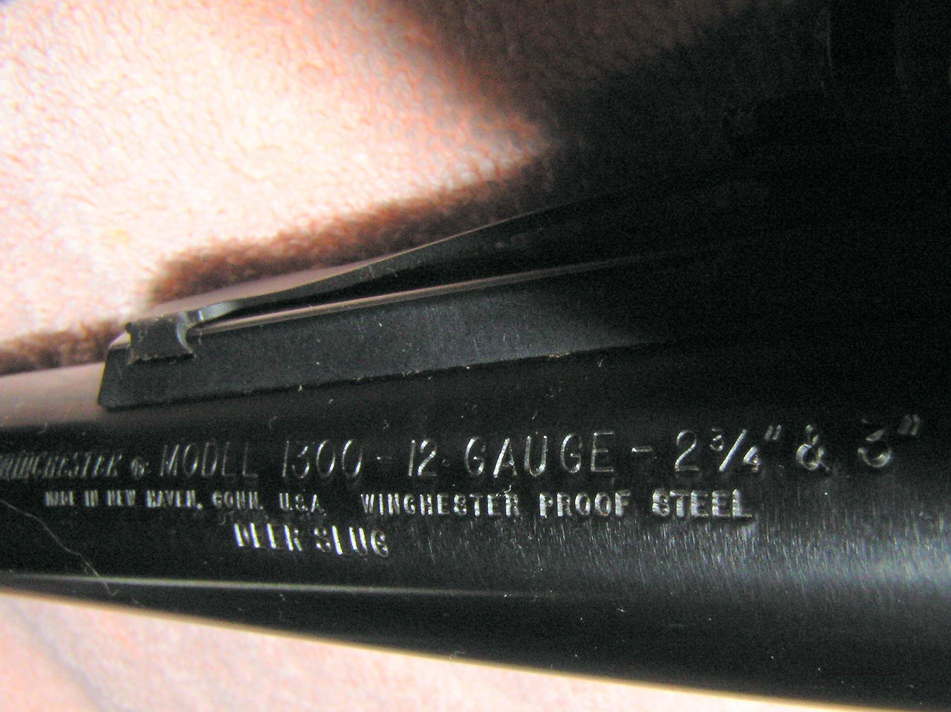 "Winchester 1300  12 Gauge 2 3/4 "" & 3"" Barrel  Guns > Shotguns > Winchester Shotguns - Modern > Pump Action > Deer Guns"