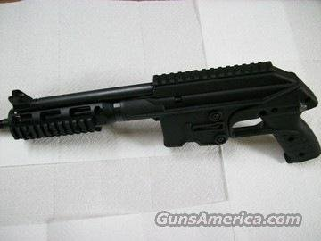 Keltec PLR 16 with sling and red lion forend  Guns > Pistols > Kel-Tec Pistols > .223 Type