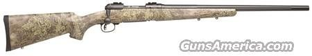 Savage Model 10 Predator Hunter 223  Guns > Rifles > Savage Rifles > Accutrigger Models > Sporting