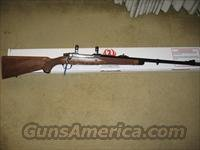 .416 Ruger African Safari  Guns > Rifles > Ruger Rifles > Model 77