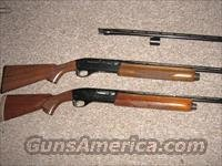 Remington 1100 410 shotgun  Guns > Shotguns > Remington Shotguns  > Autoloaders > Hunting