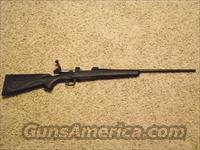 Winchester Model 70 .223 WSSM  Guns > Rifles > Winchester Rifles - Modern Bolt/Auto/Single > Model 70 > Post-64