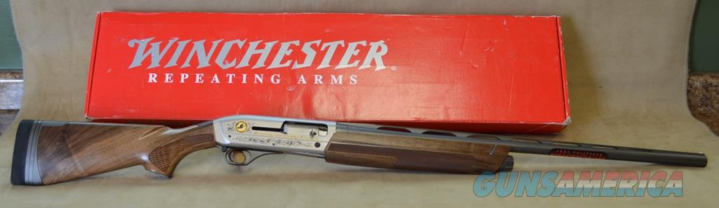CONSIGNMENT Winchester SX3 NWTF Edition - 12 gauge  Guns > Shotguns > Winchester Shotguns - Modern > Autoloaders > Hunting