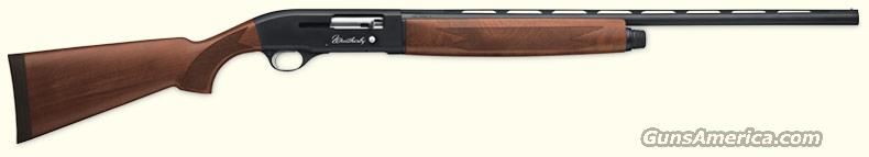Weatherby Model SA-08, Uplands, Waterfowl, 20 Gauge, Semi-Automatic Shotgun, Wood Stock,  Guns > Shotguns > Weatherby Shotguns > Hunting > Autoloader