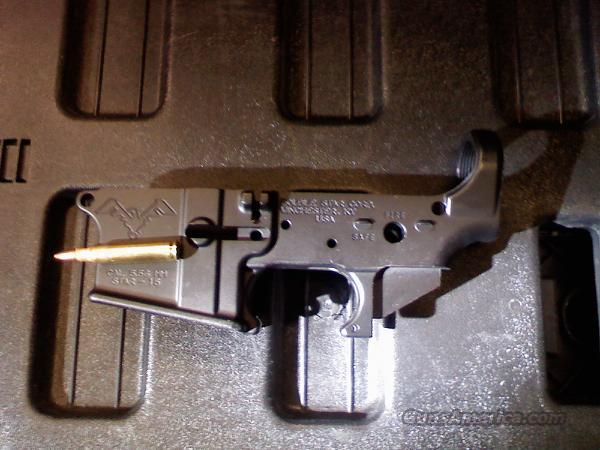 Double Star  Guns > Rifles > AR-15 Rifles - Small Manufacturers > Lower Only