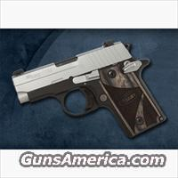 Sig P238....with 2- 6 round mags  Guns > Pistols > Sig - Sauer/Sigarms Pistols > P238