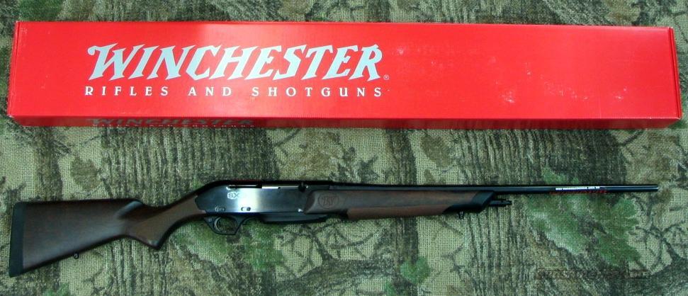 WINCHESTER SXR Semi-Auto Rifle, 300WSM or 270WSM