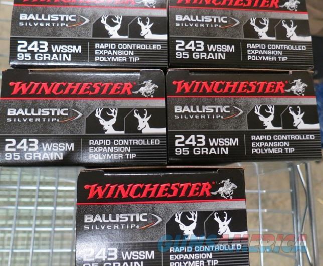 WINCHESTER 243 WSSM 95gr BALLISTIC TIP 100rd (5bx of 20)  Non-Guns > Ammunition