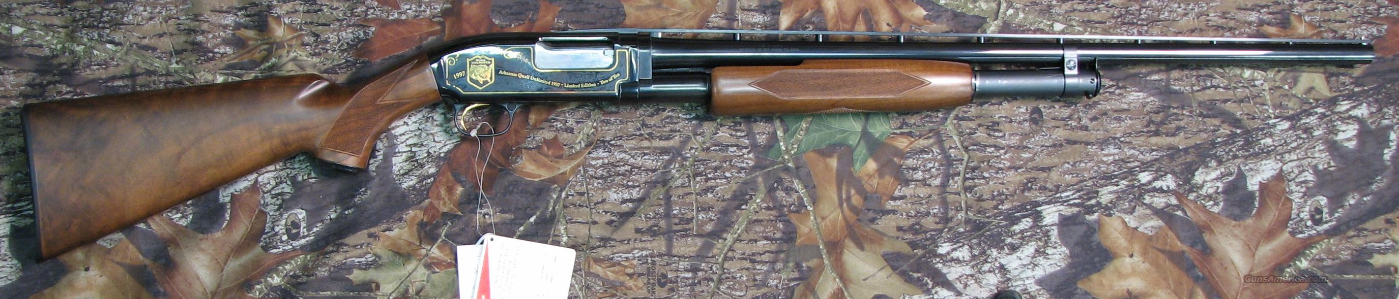 1997 Arkansas Quail Unlimited Mod 12 Winchester  Guns > Shotguns > Winchester Shotgun Commemoratives