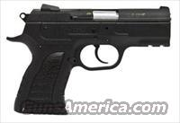 EAA Witness Polymer P Compact  10MM   NEW!  Guns > Pistols > EAA Pistols > Other