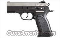 EAA P Carry Witness 45 ACP   NEW!  Guns > Pistols > EAA Pistols > Other