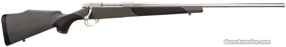 Weatherby vanguard 2 stock options