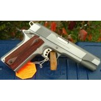 01070XSE Colt 1911 Stainless Government 45 ACP  NEW!  Guns > Pistols > Colt Automatic Pistols (1911 & Var)