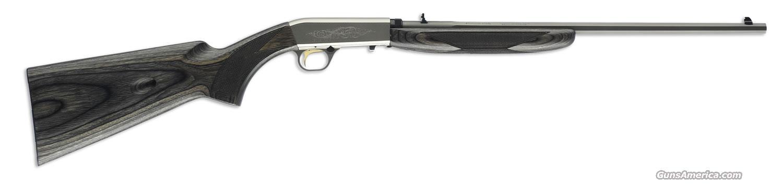 Ltd Edition Semi-Auto 22 Stainless Grey OCTAGON  Guns > Rifles > Browning Rifles > Semi Auto > Hunting