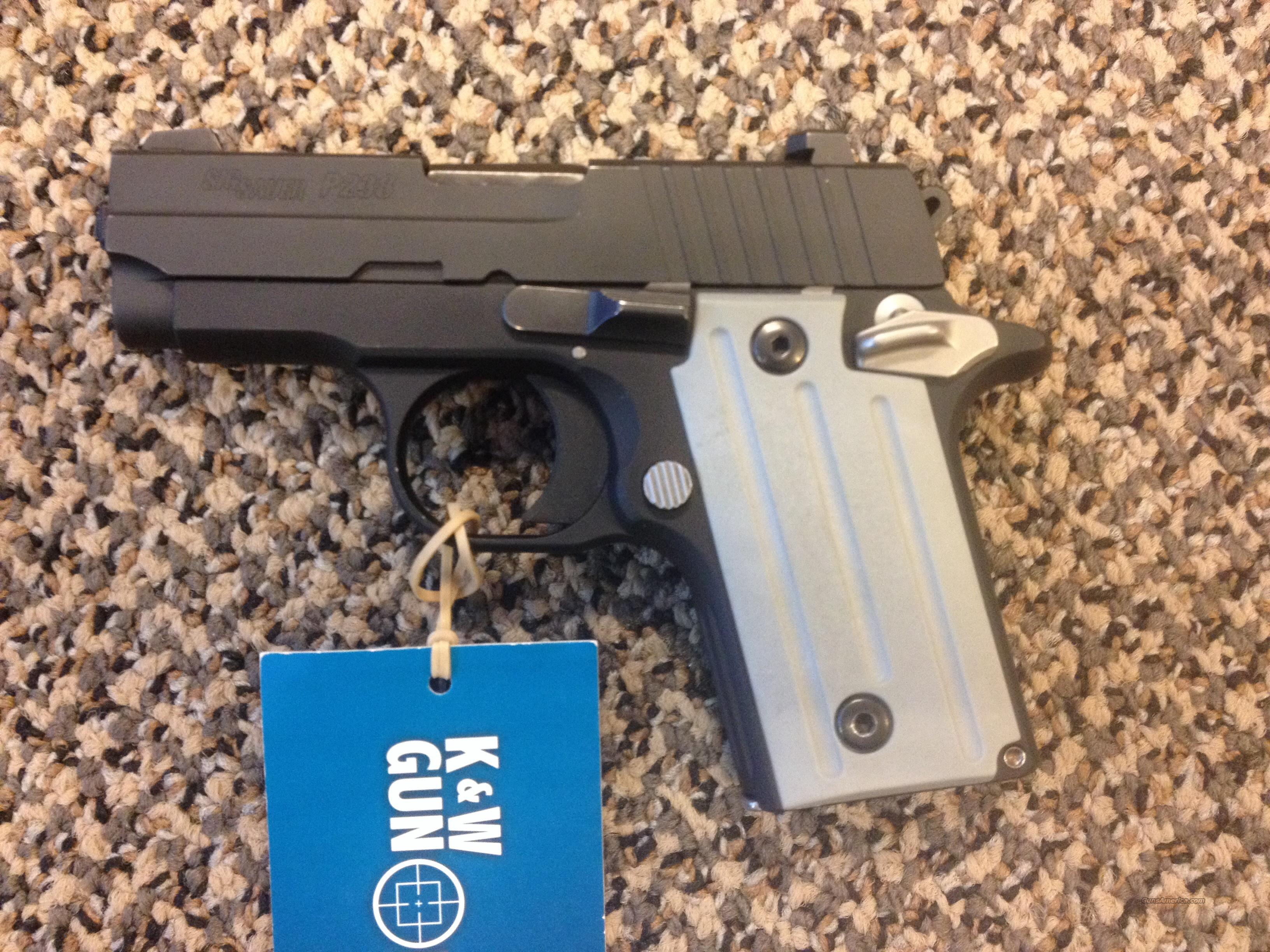 SIG P238 WITH FACTORY NIGHT SIGHTS  Guns > Pistols > Sig - Sauer/Sigarms Pistols > P238