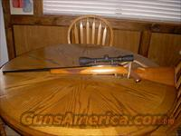 Ruger M77  25-06  Ruger Rifles > Model 77