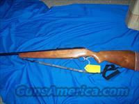 mossberg model 385KA bolt action 20 gauge  Guns > Shotguns > Mossberg Shotguns > Pump > Sporting