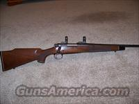 Rem.Mod.700 BDL 17Cal.  Guns > Rifles > Remington Rifles - Modern > Model 700 > Sporting
