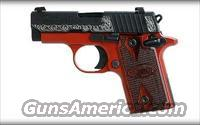Lady In Red - Sig Sauer P238 .380ACP   Guns > Pistols > Sig - Sauer/Sigarms Pistols > P238