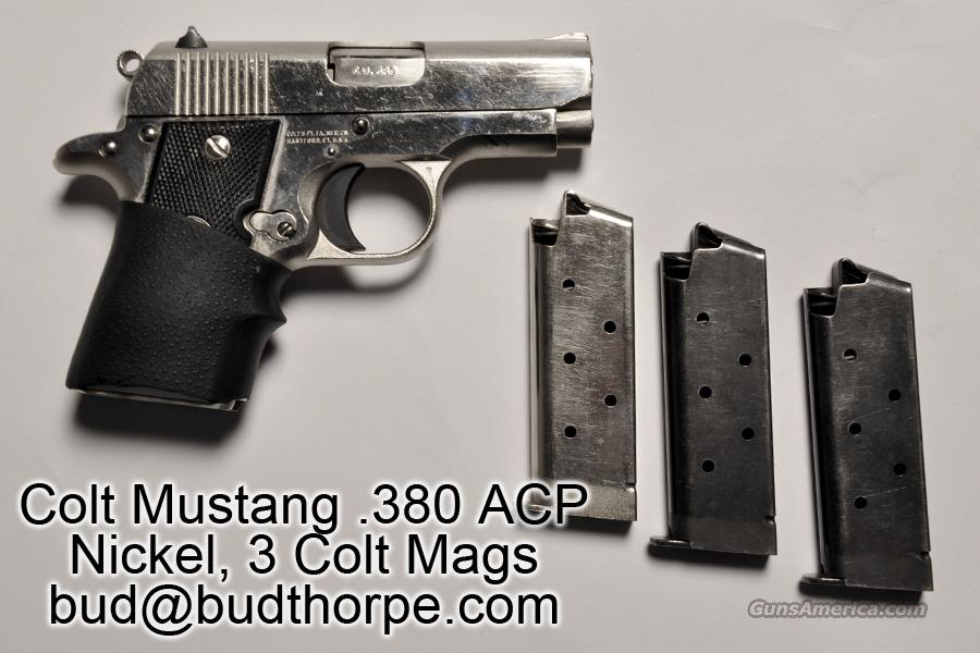 Colt Mustang 380 Nickel Used  Guns > Pistols > Colt Automatic Pistols (.25, .32, & .380 cal)