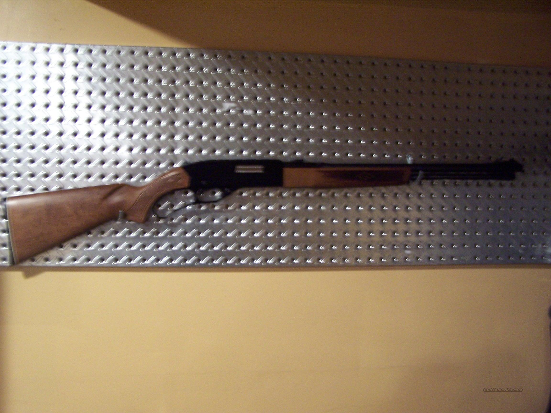 BEAUTIFUL, LIKE NEW WINCHESTER MODEL 250 LEVER ACTION .22 !!!  Guns > Rifles > Winchester Rifles - Modern Lever > Other Lever > Post-64