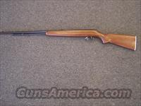 Remington 550-1  Guns > Rifles > Remington Rifles - Modern > .22 Rimfire Models