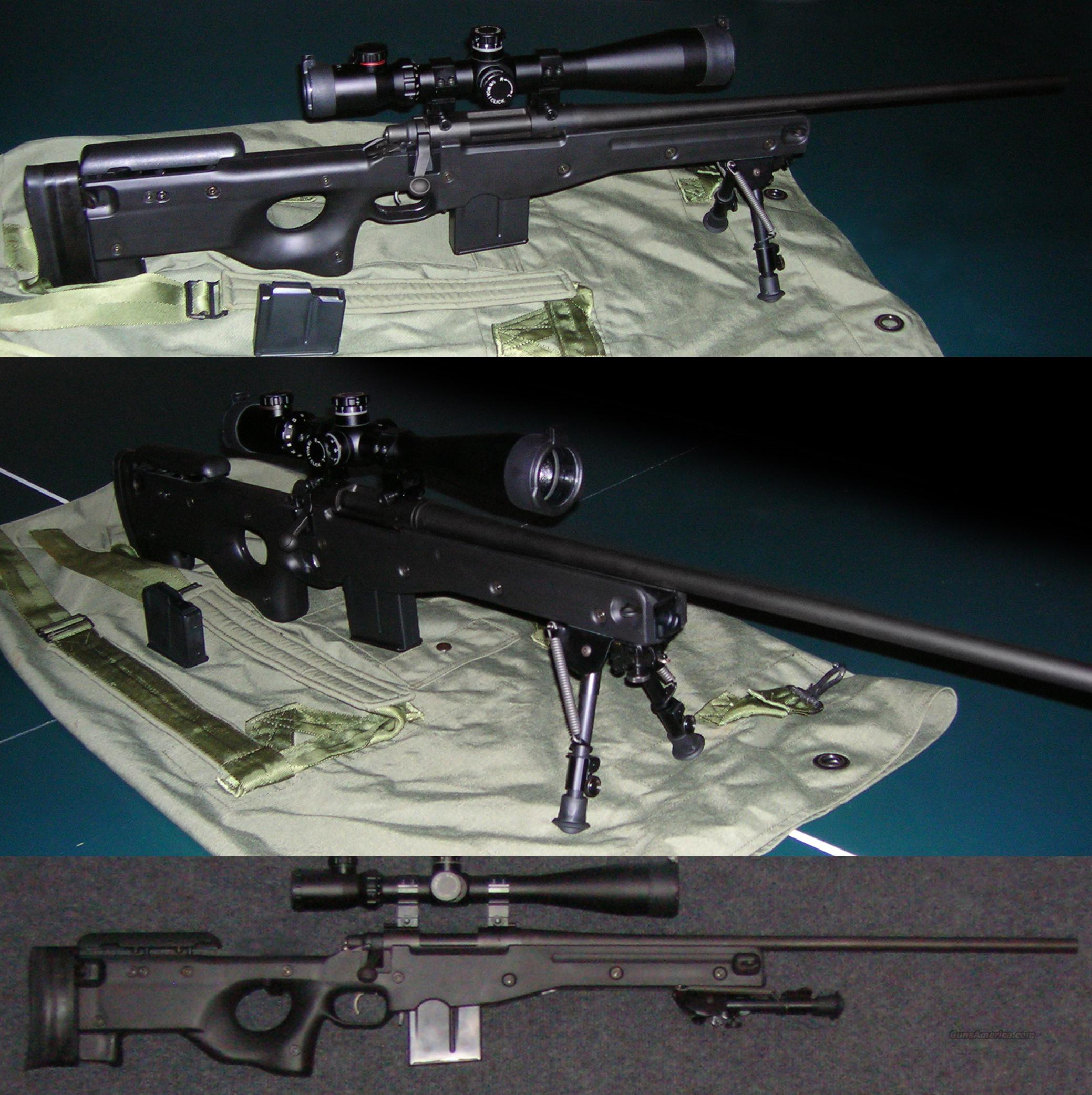 .308 Bolt Action Remington 700 with Accuracy International Chassis  Guns > Rifles > Remington Rifles - Modern > Model 700 > Tactical