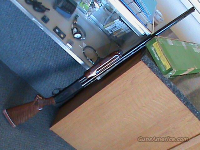 "Remington 870 TA Trap 12 Gauge 30"" VR  Guns > Shotguns > Remington Shotguns  > Pump > Trap/Skeet"