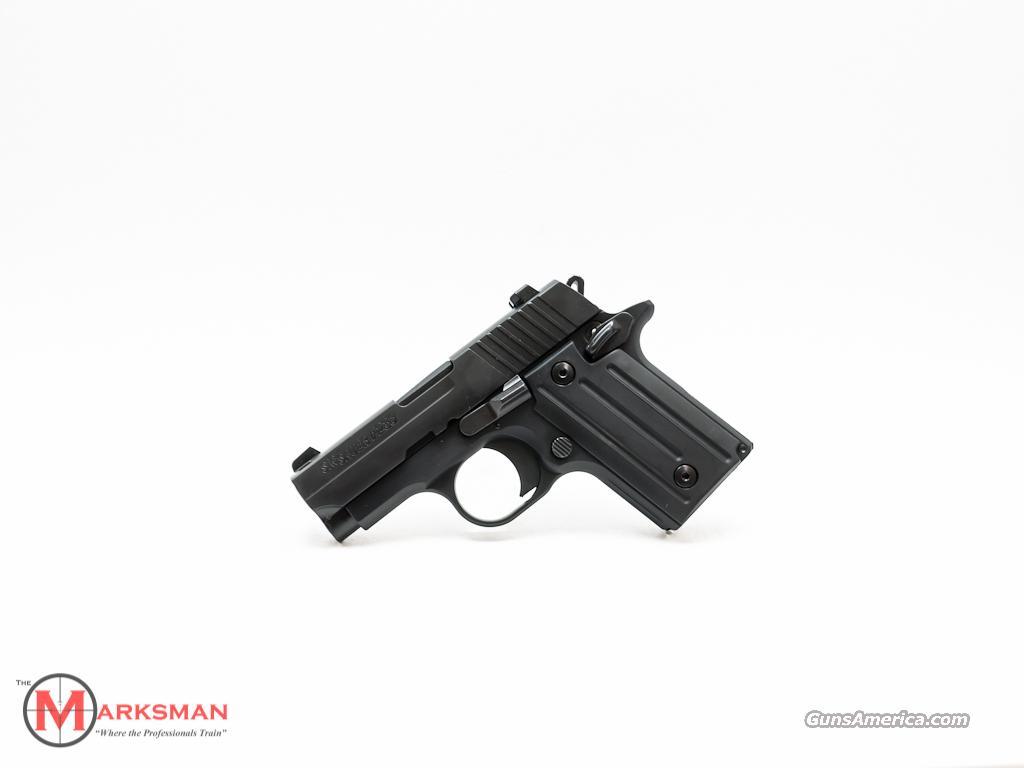 Sig Sauer P238 .380 ACP NEW Night Sights  Guns > Pistols > Sig - Sauer/Sigarms Pistols > P238