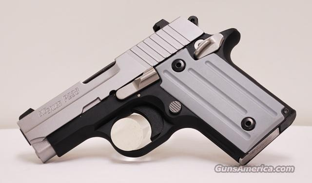Sig Sauer 238 Two Tone 380 ACP  Guns > Pistols > Sig - Sauer/Sigarms Pistols > Other