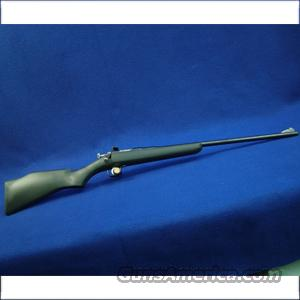 Rogue Rifles Chipmunk Youth Single Shot .22LR Rifle with Synthetic Stock, Blue Finish - Like New, No Box  Guns