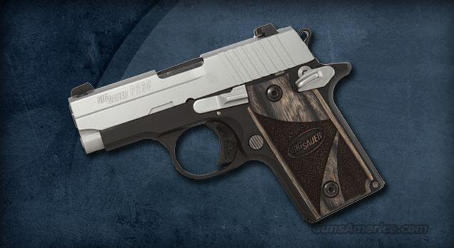 Sig Sauer P238 Two-Tone Blackwood  Guns > Pistols > Sig - Sauer/Sigarms Pistols > P238