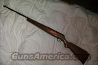 20 Gauge Sears Roebuck Shotgun  Guns > Shotguns > S Misc Shotguns